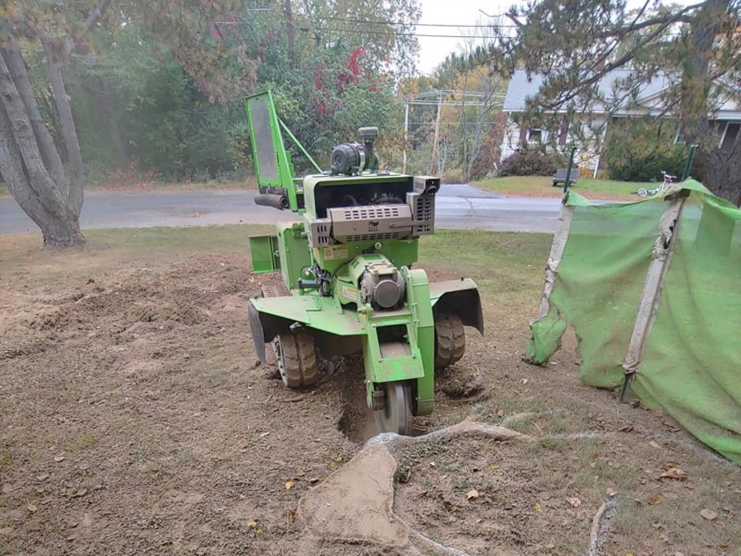 Discover the benefits of professional stump grinding